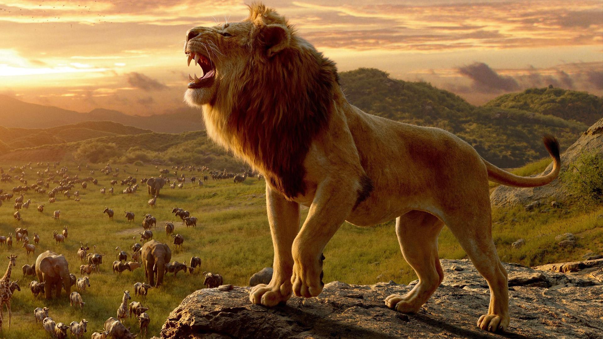 Sfondi desktop re leone